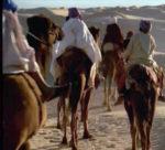 L'assedio di Medina
