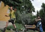 A Riva del Garda,  la mostra Bella d'olivo rigogliosa pianta
