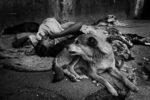 Dannati, mostra fotografica di Giorgio Taraschi