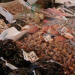 Sicurezza alimentare: intensificati i controlli. Sequestrate circa 14 tonnellate di prodotti ittici  a Napoli