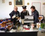 Laboratorio di stupefacente scoperto dai carabinieri