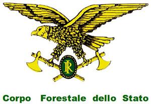 Canile con 500 esemplari nella periferia di Roma posto sotto sequesto