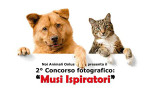 Musi ispiratori, secondo concorso fotografico