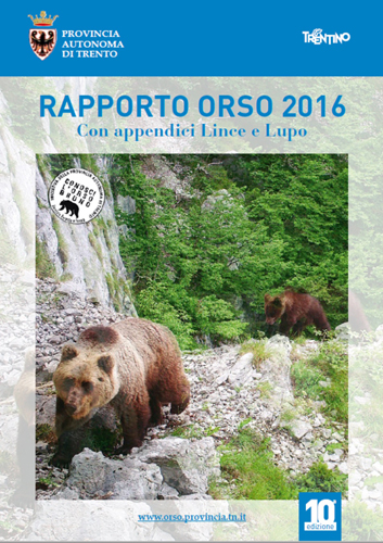 Orsi, ancora sostanzialmente stabile la popolazione in Trentino