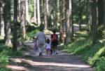 Oltre mille appuntamenti per vivere parchi e reti di riserve