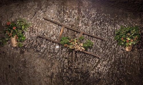 Festa della castagna di Vallerano: il programma del secondo week-end