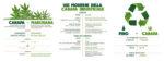 Canapa Mundi – Mangiare con gusto e mantenersi leggeri durante le Feste? Con la canapa si può!