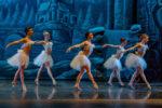 Il lago dei cigni, lo spettacolo al Teatro Brancaccio di Roma