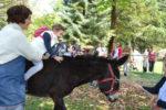 EDUCA, una domenica al parco da vivere con la famiglia