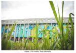 Tsunamy – Joys completa l'opera murale di 800 mq per Without Frontiers – Lunetta a colori – Capitolo III