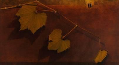 """Contaminazioni, la mostra di Roberto Rampinelli allo Spazio Espositivo Le Stanze alla Biblioteca Mediateca """"A.Meli"""" di Trescore Balneario"""