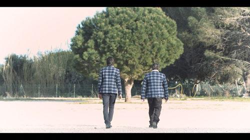 """Il videoclip de """"Il Pavone"""", brano estratto dall'album """"Animale sociale"""" del cantautore siciliano Alessio Alessandra è disponibile su YouTube"""