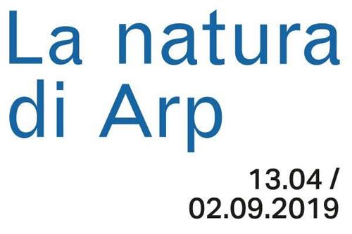 Alla Collezione Peggy Guggenheim va in mostra la natura secondo Jean (Hans) Arp fino al 2 settembre