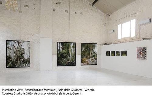 Recursions and Mutations presenta le opera di Vincenzo Castella, Lynn Davis, Jacob Hashimoto e Roberto Pugliese