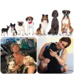 Attenti al Cane, oggi si celebra la giornata mondiale del nostro amico a quattro zampe
