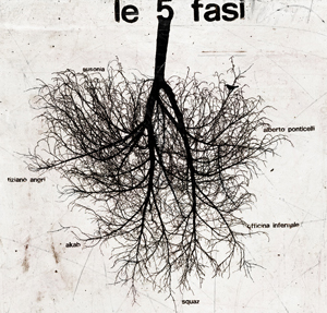 Le 5 fasi