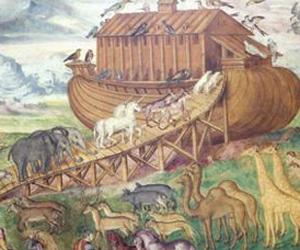 Alla ricerca dell'arca perduta