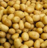 La patata, un alimento nutriente, economico e salutare