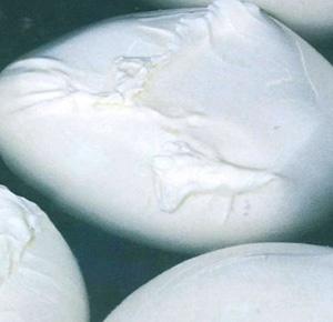 Sicurezza agroalimentare: sequestrate in Liguria confezioni di mozzarelle di bufala campana riportanti marchio Dop contraffatto