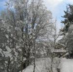 Emergenza neve, salvate dalla forestale otto persone disperse in provincia di Roma