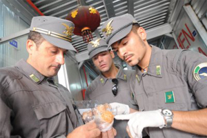 Sequestrati tre quntali di alimenti surgelati cinesi in Provincia di Siena