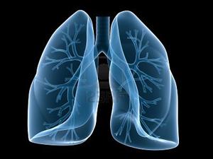 Emergenza in allergologia e pneumologia, al via il summit