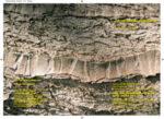 Ecoscultura di Nazareno Flenghi, la presentazione nel Parco della Raccolta Manzu' di Ardea