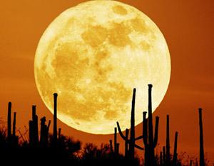 Luna gigante e luminosa per gli innamorati