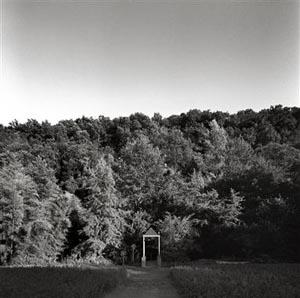 I Giardini Paralleli, la mostra di Francesco Galli al Biancavolta di Viterbo