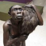 Homo Sapiens, la mostra in corso al Museo delle Scienze di Trento