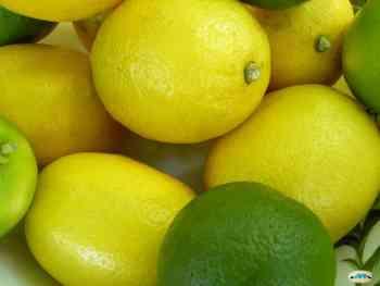 Il limone e le sue proprietà