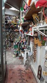 La Biennale di Venezia, breve guida ai Padiglioni più strani. Un tour all'insegna delle bizzarrie di questa 56 edizione