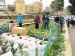 Boom di orti a Roma per una città più verde e solidale