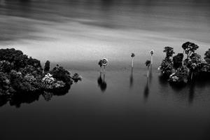 Un Regard Silencieux, Fotografie di Renato Pasmanik alla Galleria Gomiero di Milano