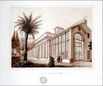 Vivere da scienziati nella Roma dell'Ottocento. Appuntamento al Museo di Roma in Trastevere