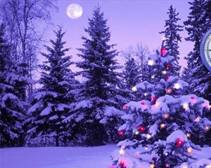 Auguri di un Felice e sereno Natale
