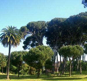Il premio Oscar Nicola Piovani  propone a Villa Pamphilj La vita e' bella a Ciliegine