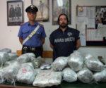 Corrieri della droga in manette. Rifornivano i pusher di San Lorenzo e Pigneto a Roma