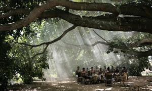 Cinemafestival, ultimo giorno del festival con il regista Ciro Guerra che presenta Los viajes del viento