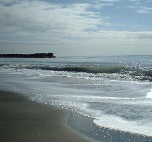 Cinque spiagge del Litorale Romano in lizza per la certificazione Ecoblu