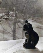 Il gatto inverno