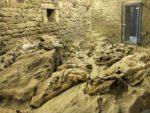 Un museo per le Mummie di Roccapelago