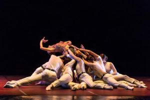 Il risveglio di un classico: Bella addormentata del Junior Balletto di Toscana al Teatro Alighieri di Ravenna