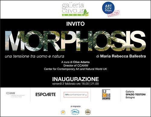 Morphosis, una tensione tra uomo e natura, la mostra di Maria Rebecca Ballestra alla Galleria Cavour Green di Bologna