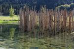 """Le palafitte di Fiavé e Ledro alla fiera """"Monumento"""" di Salisburgo"""
