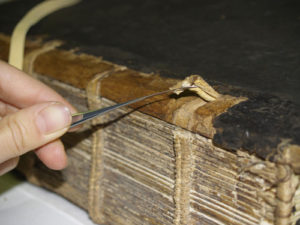 Il manoscritto 308: fra miniature, storia e restauri