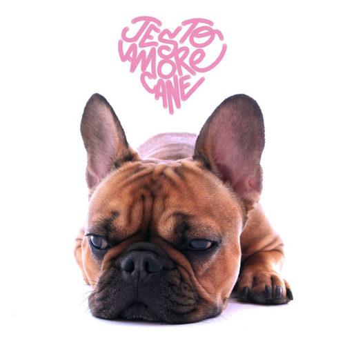 Il rapper Jesto torna con il nuovo singolo Amore Cane
