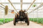 Serra Madre. Country Fest e Acro, nuovo museo degli strumenti agricoli
