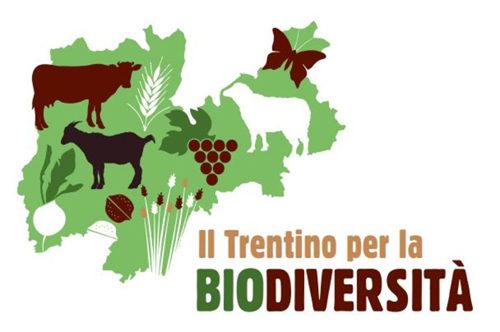 Ritorna la Festa della biodiversità