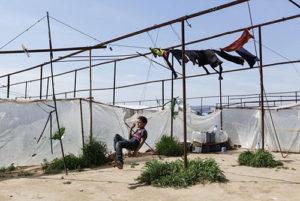Haraket: la mostra su vita e sfruttamento lavorativo siriano in Turchia